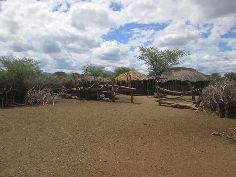 Maasai-hut-homes